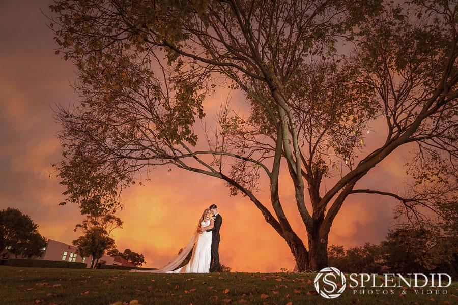 Best wedding photographer_KS-36