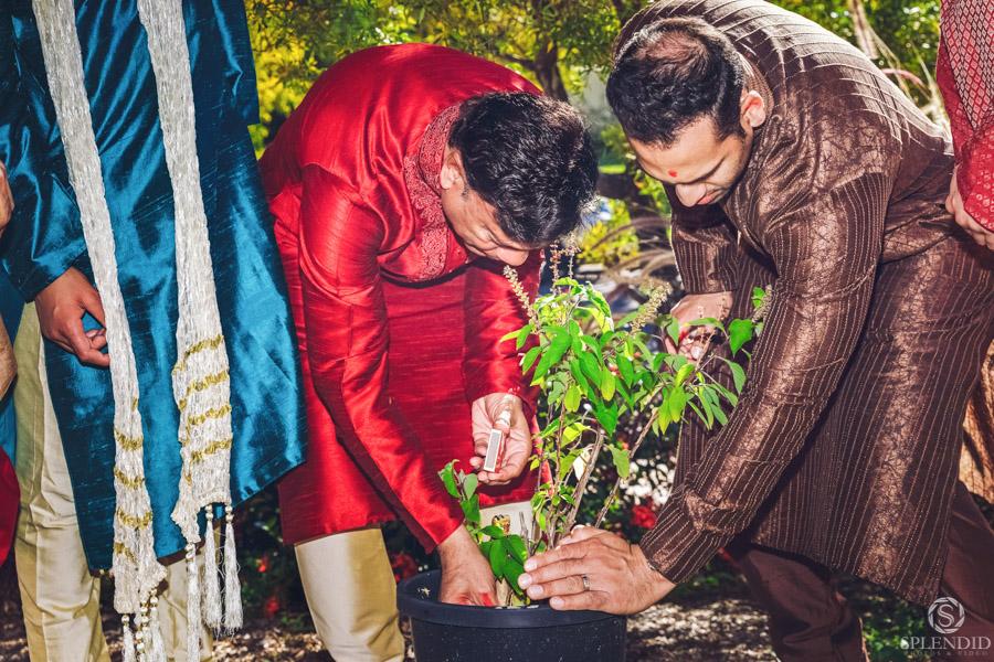 Indian Wedding Photography_0408ZM_27