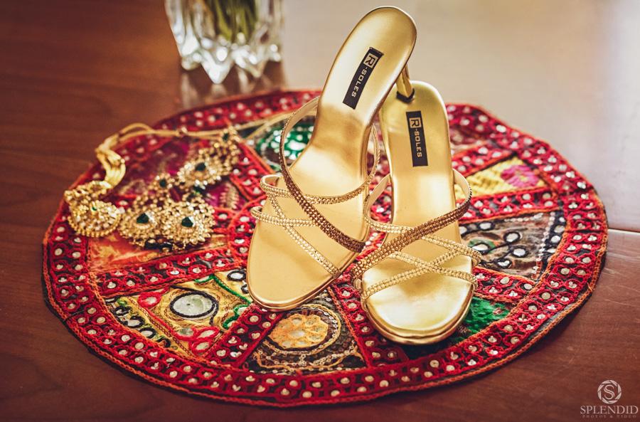 Indian Wedding Photography_0408ZM_49