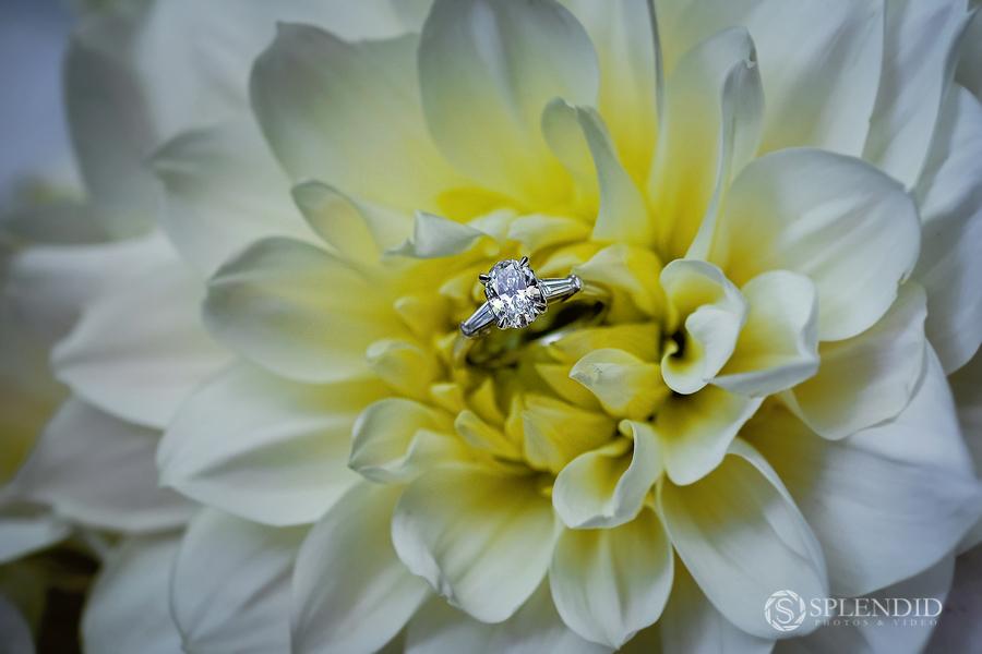 Lqua Wedding Photo_MB-12