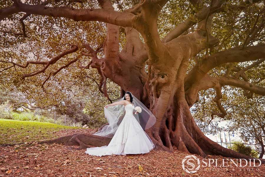 Best wedding photographer_MC-23