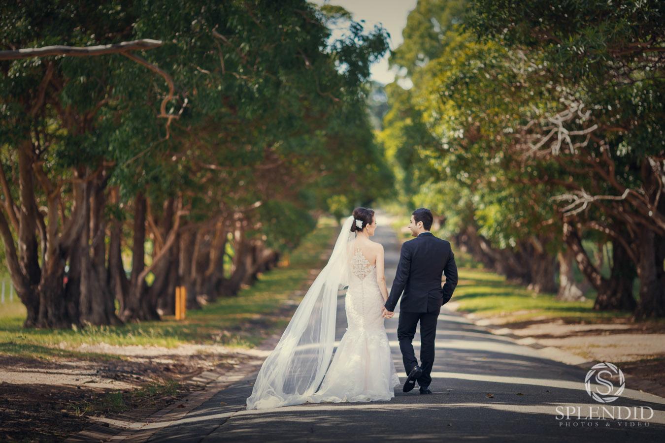 Cem and Cisem Wedding_56