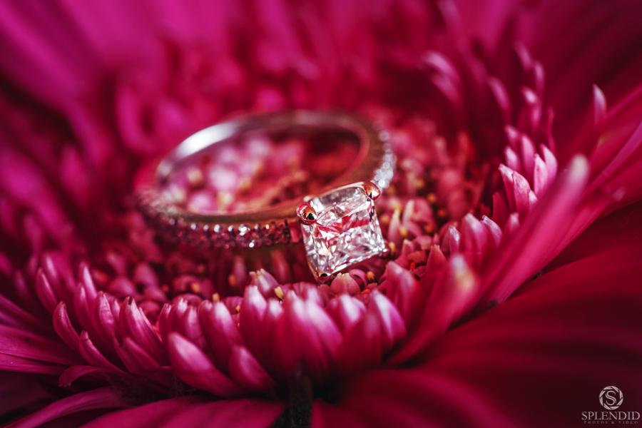 Doltone House Wedding 0521LC_3