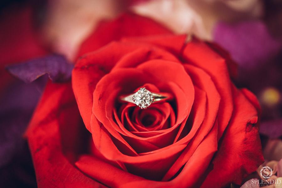 Oatlands House Wedding_0527RB10